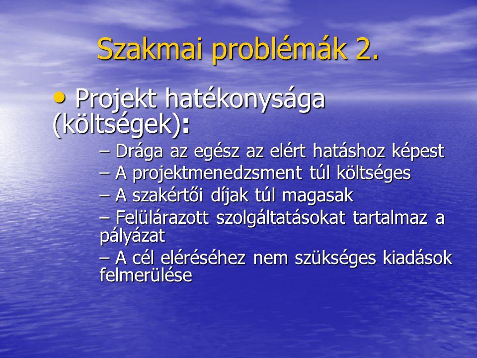Szakmai problémák 2. Projekt hatékonysága (költségek): Projekt hatékonysága (költségek): – Drága az egész az elért hatáshoz képest – A projektmenedzsm