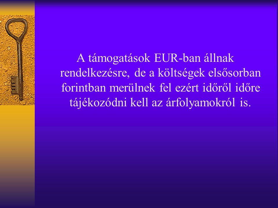 A támogatások EUR-ban állnak rendelkezésre, de a költségek elsősorban forintban merülnek fel ezért időről időre tájékozódni kell az árfolyamokról is.