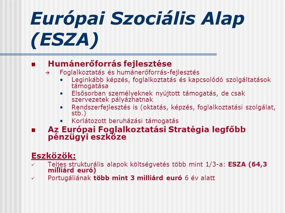 Európai Szociális Alap (ESZA) Humánerőforrás fejlesztése  Foglalkoztatás és humánerőforrás-fejlesztés Leginkább képzés, foglalkoztatás és kapcsolódó