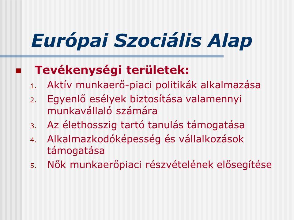Európai Szociális Alap Tevékenységi területek: 1. Aktív munkaerő-piaci politikák alkalmazása 2. Egyenlő esélyek biztosítása valamennyi munkavállaló sz
