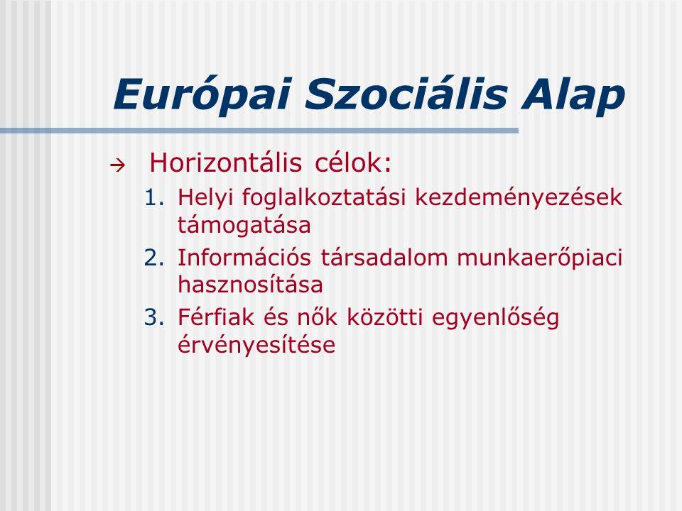 Európai Szociális Alap  Horizontális célok: 1.Helyi foglalkoztatási kezdeményezések támogatása 2.Információs társadalom munkaerőpiaci hasznosítása 3.