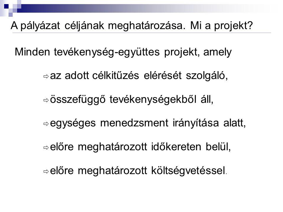 A pályázat céljának meghatározása.Mi a projekt.
