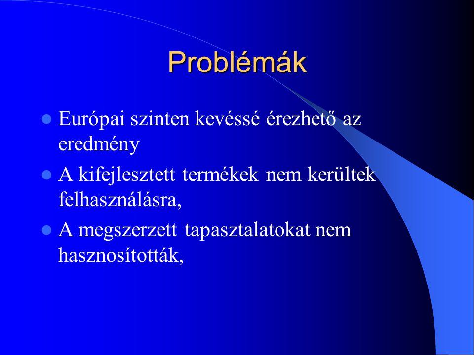Problémák Európai szinten kevéssé érezhető az eredmény A kifejlesztett termékek nem kerültek felhasználásra, A megszerzett tapasztalatokat nem hasznosították,