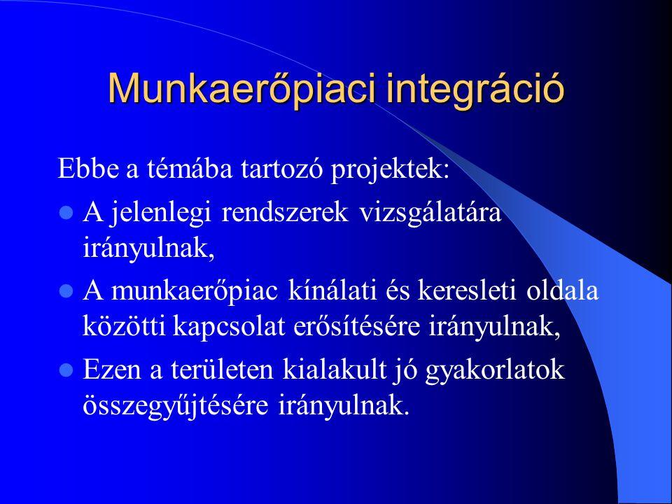 Munkaerőpiaci integráció Ebbe a témába tartozó projektek: A jelenlegi rendszerek vizsgálatára irányulnak, A munkaerőpiac kínálati és keresleti oldala közötti kapcsolat erősítésére irányulnak, Ezen a területen kialakult jó gyakorlatok összegyűjtésére irányulnak.