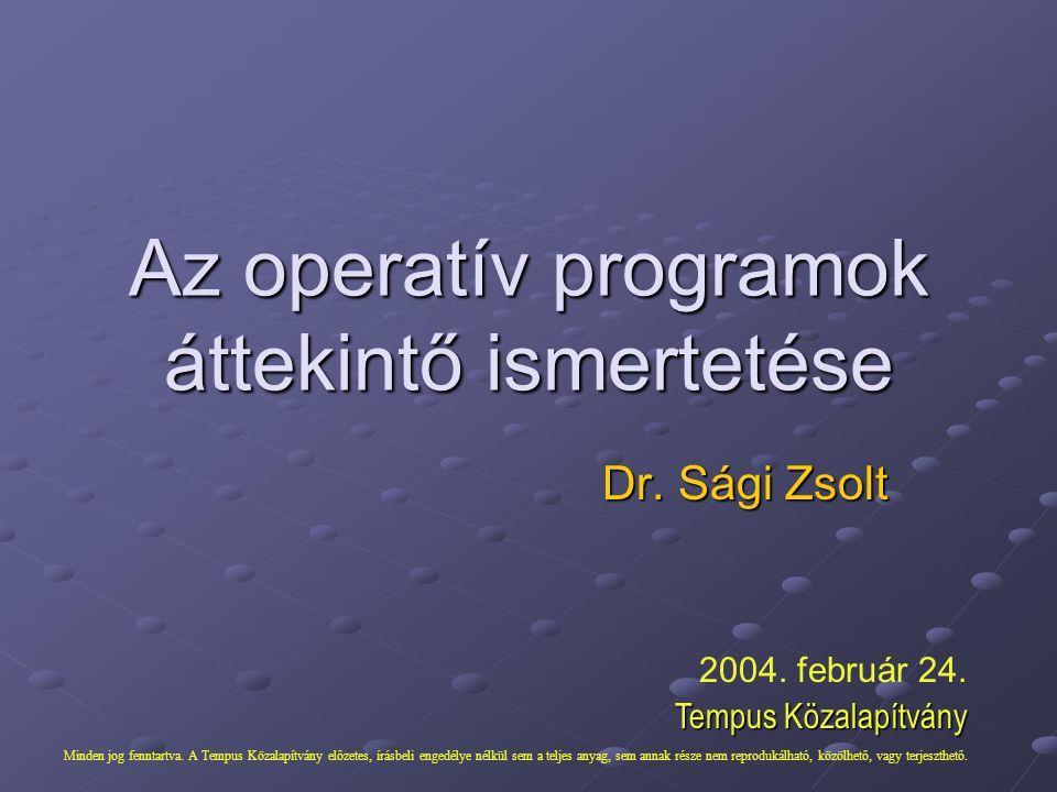 Dr. Sági Zsolt Az operatív programok áttekintő ismertetése 2004. február 24. Tempus Közalapítvány Minden jog fenntartva. A Tempus Közalapítvány előzet