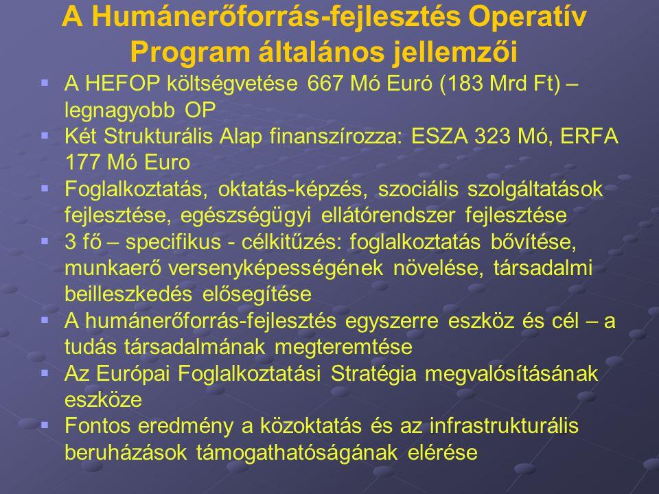 A Humánerőforrás-fejlesztés Operatív Program általános jellemzői   A HEFOP költségvetése 667 Mó Euró (183 Mrd Ft) – legnagyobb OP   Két Strukturál