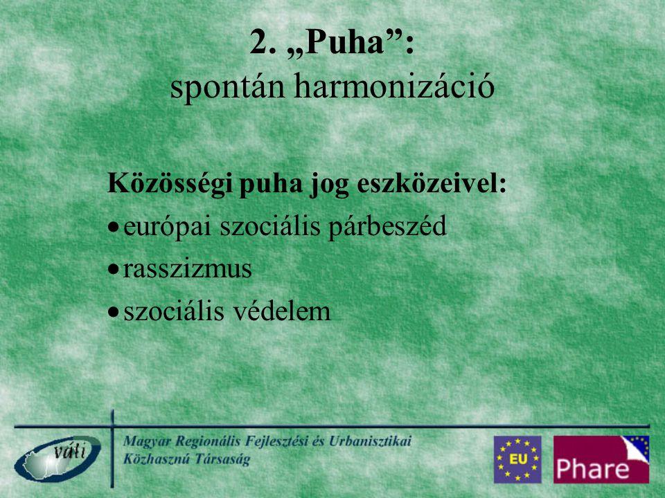 """2. """"Puha"""": spontán harmonizáció Közösségi puha jog eszközeivel:  európai szociális párbeszéd  rasszizmus  szociális védelem"""