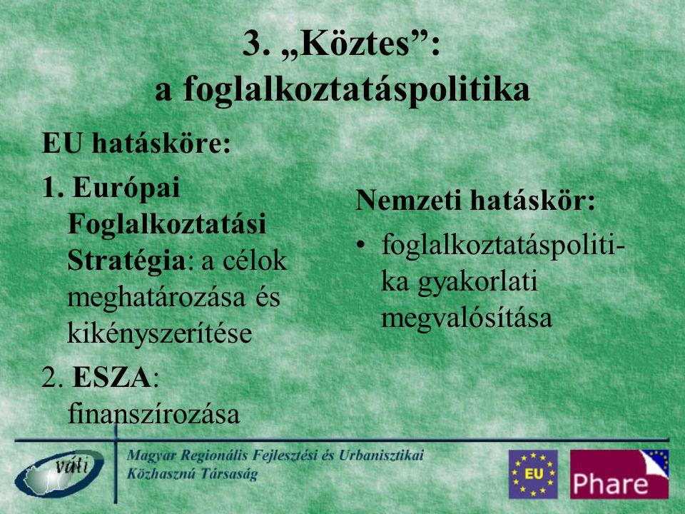 """3. """"Köztes"""": a foglalkoztatáspolitika EU hatásköre: 1. Európai Foglalkoztatási Stratégia: a célok meghatározása és kikényszerítése 2. ESZA: finanszíro"""