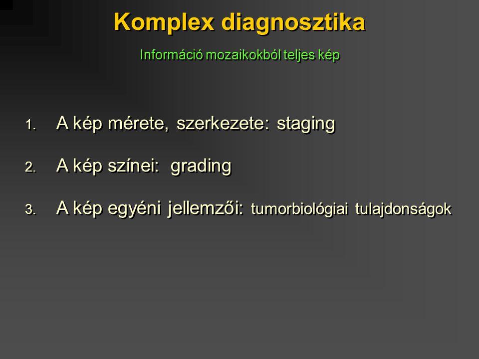 Komplex diagnosztika 1. A kép mérete, szerkezete: staging 2. A kép színei: grading 3. A kép egyéni jellemzői: tumorbiológiai tulajdonságok 1. A kép mé