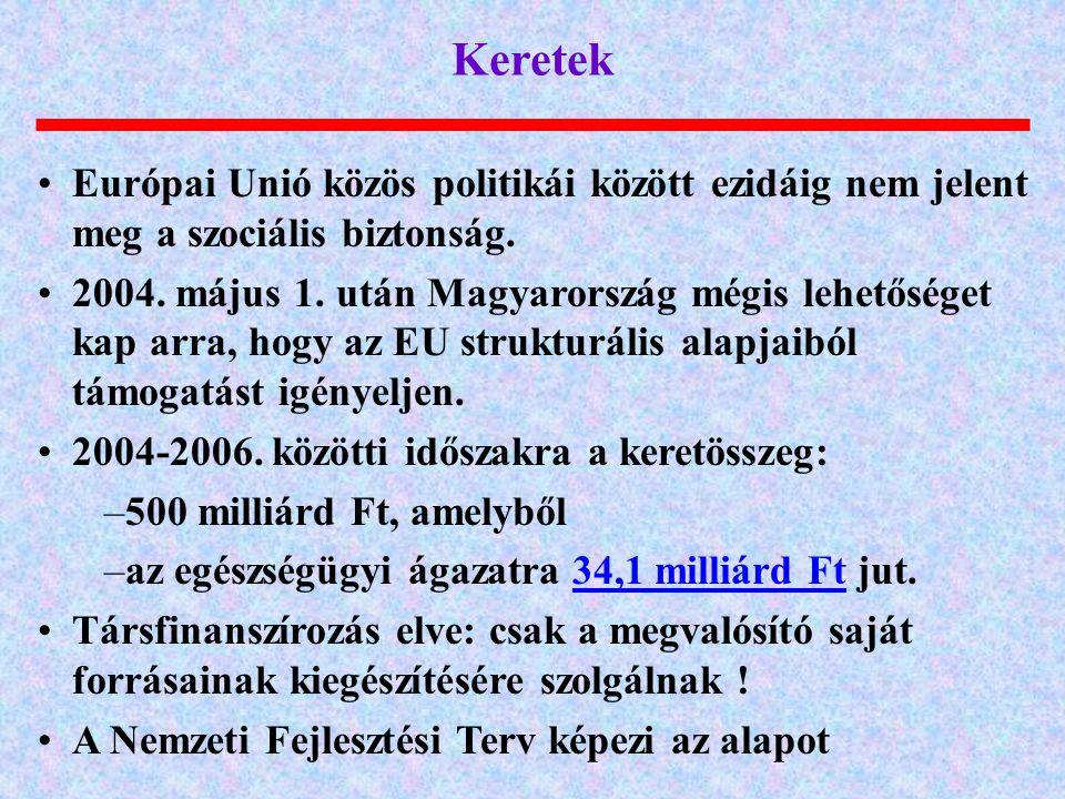 Keretek Európai Unió közös politikái között ezidáig nem jelent meg a szociális biztonság. 2004. május 1. után Magyarország mégis lehetőséget kap arra,
