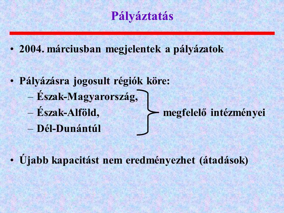 Pályáztatás 2004. márciusban megjelentek a pályázatok Pályázásra jogosult régiók köre: –Észak-Magyarország, –Észak-Alföld, megfelelő intézményei –Dél-