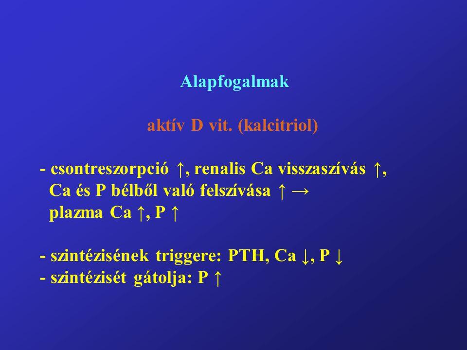 Alapfogalmak aktív D vit. (kalcitriol) - csontreszorpció ↑, renalis Ca visszaszívás ↑, Ca és P bélből való felszívása ↑ → plazma Ca ↑, P ↑ - szintézis