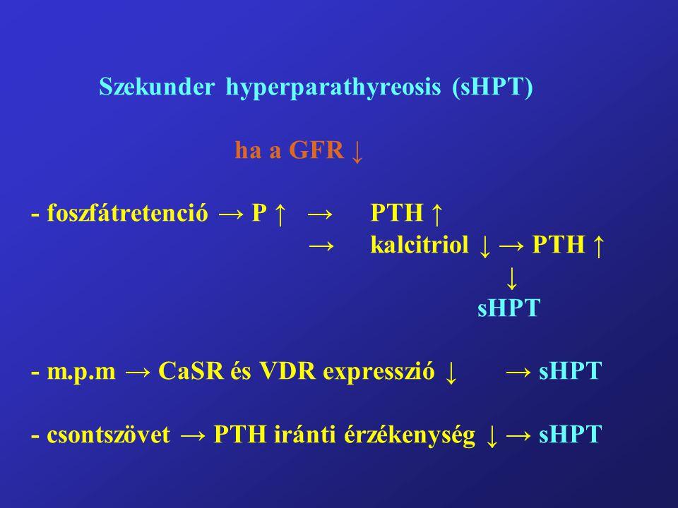 Szekunder hyperparathyreosis (sHPT) ha a GFR ↓ - foszfátretenció → P ↑ → PTH ↑ →kalcitriol ↓ → PTH ↑ ↓ sHPT - m.p.m → CaSR és VDR expresszió ↓→ sHPT -