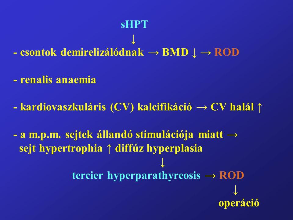 sHPT ↓ - csontok demirelizálódnak → BMD ↓ → ROD - renalis anaemia - kardiovaszkuláris (CV) kalcifikáció → CV halál ↑ - a m.p.m. sejtek állandó stimulá