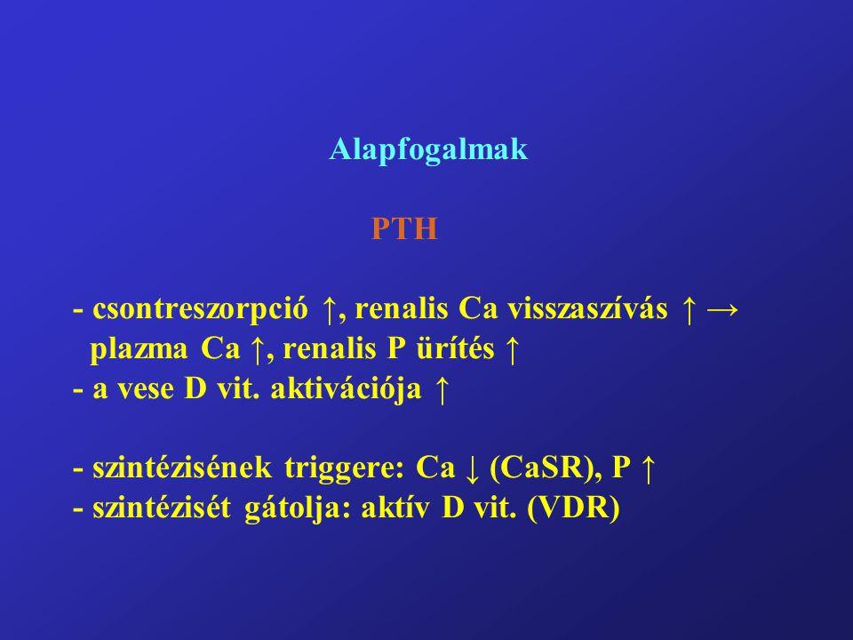 Alapfogalmak PTH - csontreszorpció ↑, renalis Ca visszaszívás ↑ → plazma Ca ↑, renalis P ürítés ↑ - a vese D vit. aktivációja ↑ - szintézisének trigge