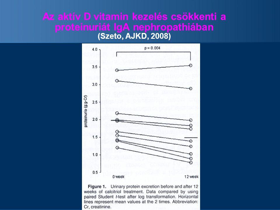 Az aktív D vitamin kezelés csökkenti a proteinuriát IgA nephropathiában (Szeto, AJKD, 2008)