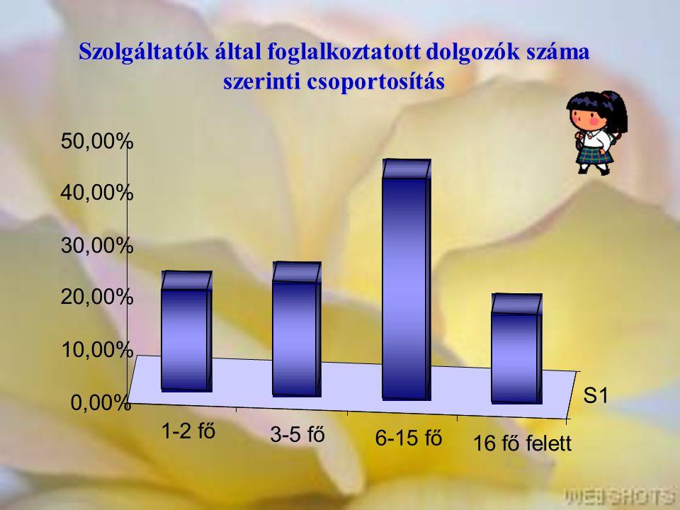 Szolgáltatók által foglalkoztatott dolgozók száma szerinti csoportosítás 1-2 fő 3-5 fő 6-15 fő 16 fő felett S1 0,00% 10,00% 20,00% 30,00% 40,00% 50,00