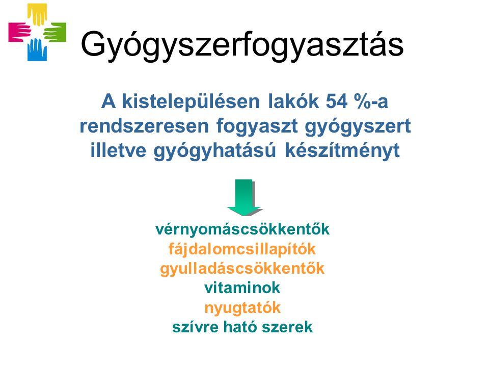 Gyógyszerfogyasztás A kistelepülésen lakók 54 %-a rendszeresen fogyaszt gyógyszert illetve gyógyhatású készítményt vérnyomáscsökkentők fájdalomcsillapítók gyulladáscsökkentők vitaminok nyugtatók szívre ható szerek vérnyomáscsökkentők fájdalomcsillapítók gyulladáscsökkentők vitaminok nyugtatók szívre ható szerek