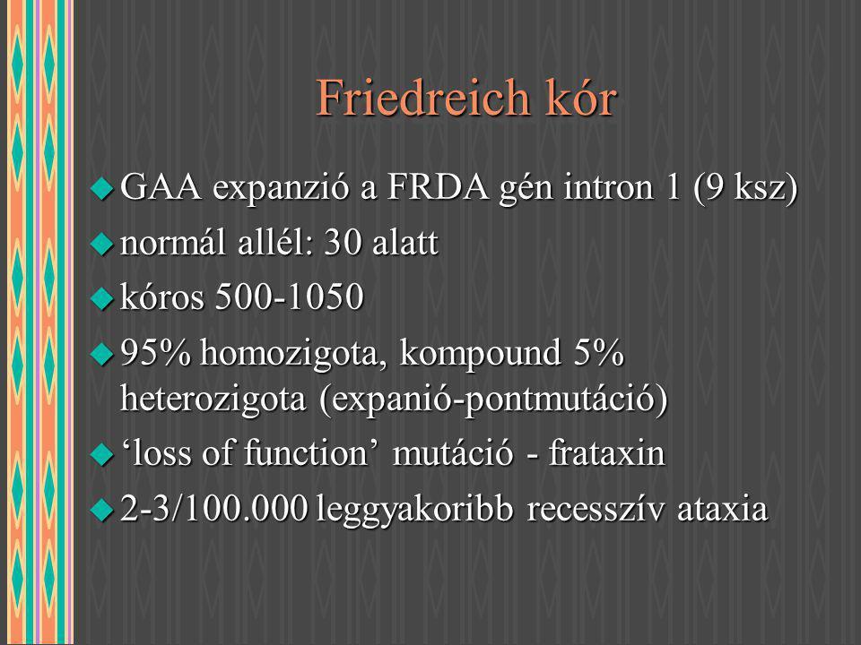 Friedreich kór u GAA expanzió a FRDA gén intron 1 (9 ksz) u normál allél: 30 alatt u kóros 500-1050 u 95% homozigota, kompound 5% heterozigota (expani