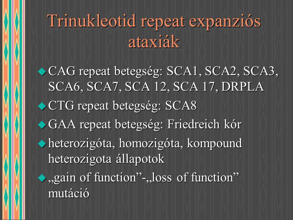 Trinukleotid repeat expanziós ataxiák u CAG repeat betegség: SCA1, SCA2, SCA3, SCA6, SCA7, SCA 12, SCA 17, DRPLA u CTG repeat betegség: SCA8 u GAA rep