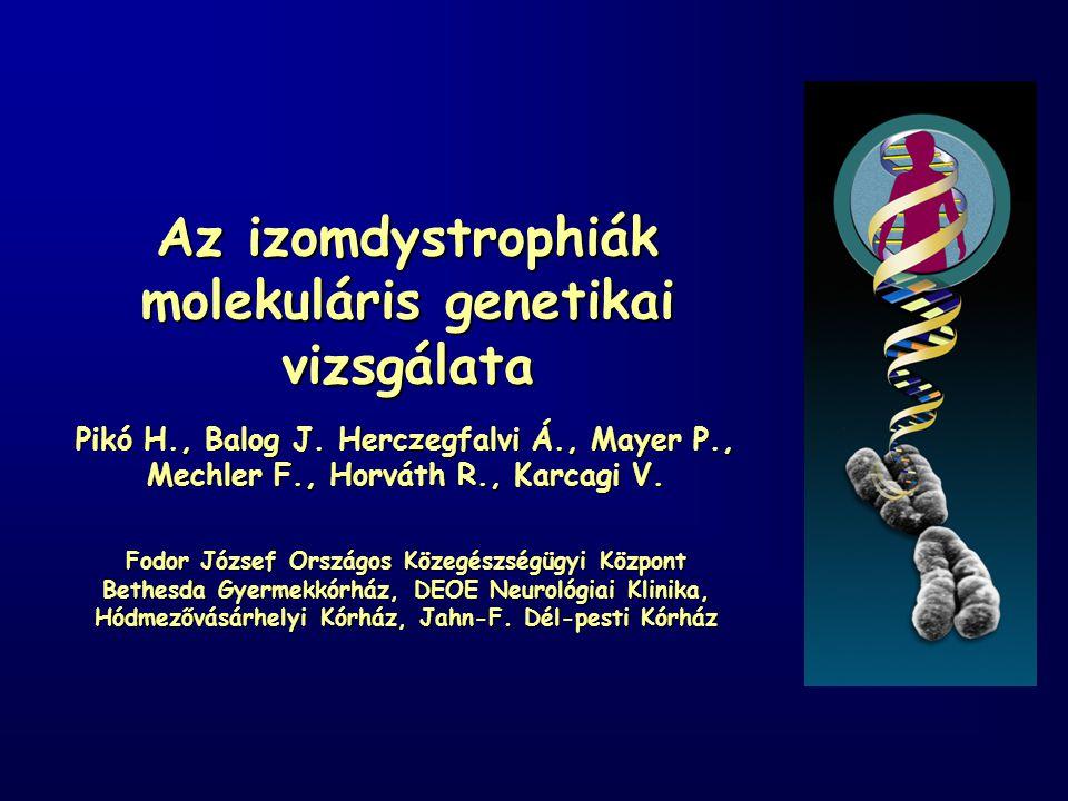 Az izomdystrophiák molekuláris genetikai vizsgálata Pikó H., Balog J.