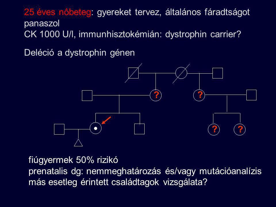 DMD gyanúja a családban ? ? DMD? CK 33/36 CK 53/58 CK 57/75/80 CK normális 70 U/l alatt