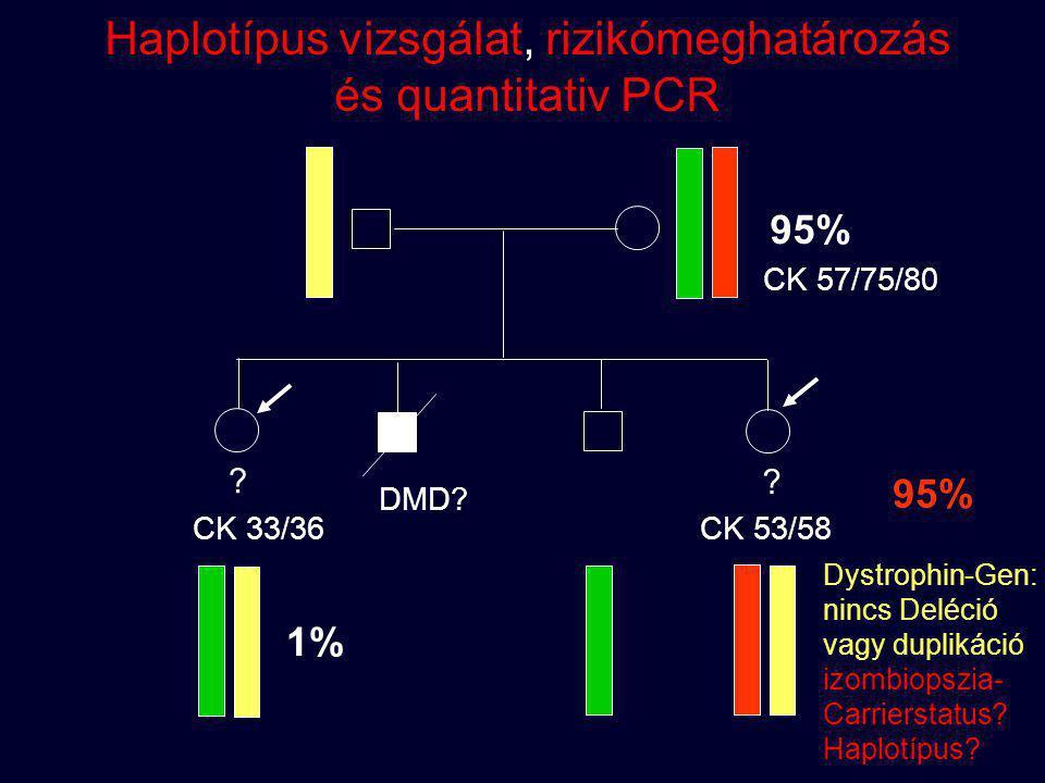 ? ? DMD? CK 33/36 CK 53/58 CK 57/75/80 95% 1% Dystrophin-Gen: nincs Deléció vagy duplikáció izombiopszia- Carrierstatus? Haplotípus? Haplotípus vizsgá