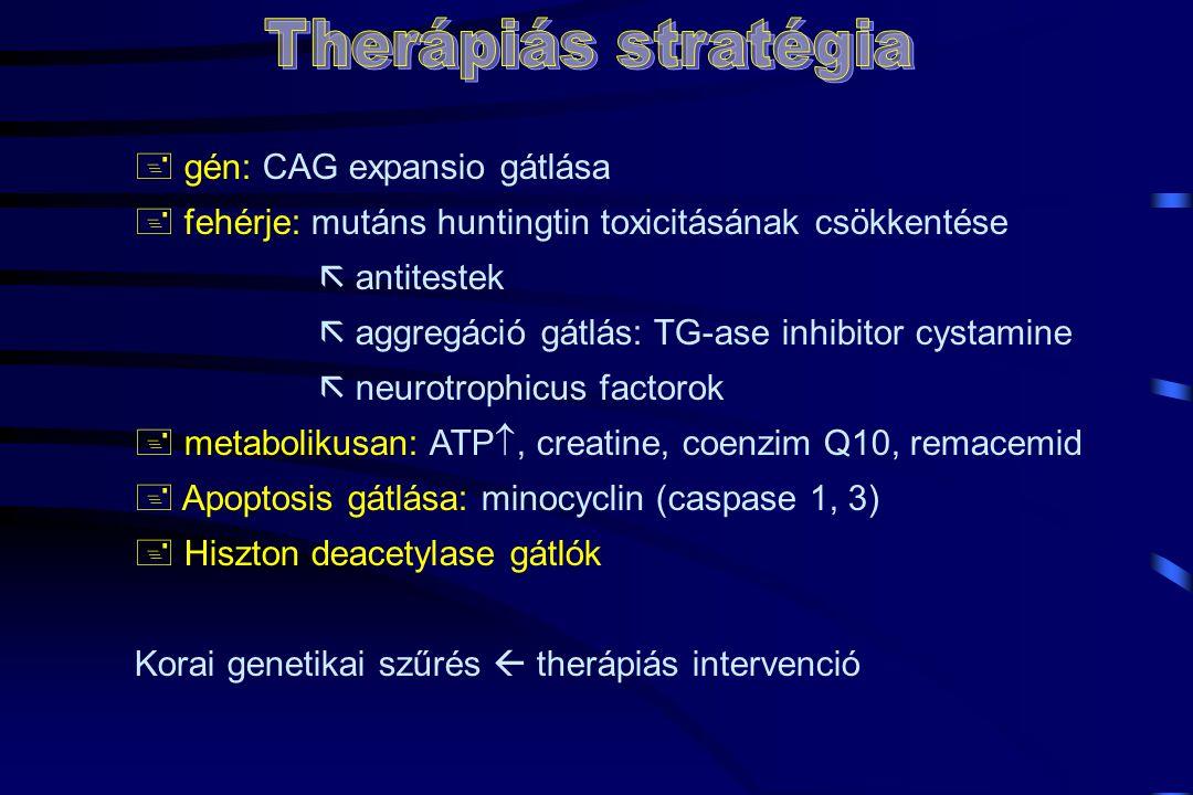+ gén: CAG expansio gátlása + fehérje: mutáns huntingtin toxicitásának csökkentése  antitestek  aggregáció gátlás: TG-ase inhibitor cystamine  neurotrophicus factorok + metabolikusan: ATP , creatine, coenzim Q10, remacemid + Apoptosis gátlása: minocyclin (caspase 1, 3) + Hiszton deacetylase gátlók Korai genetikai szűrés  therápiás intervenció