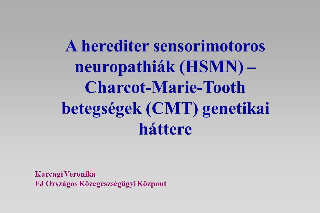 A herediter sensorimotoros neuropathiák (HSMN) – Charcot-Marie-Tooth betegségek (CMT) genetikai háttere Karcagi Veronika FJ Országos Közegészségügyi K