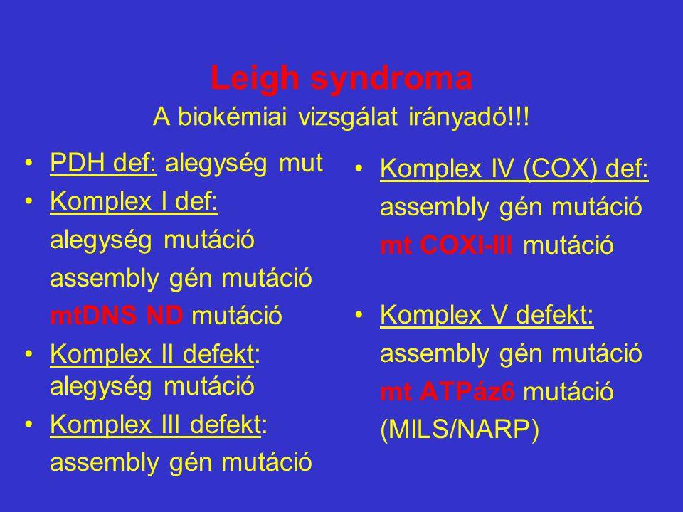 Izolált cytochrome c oxidase (COX) deficienciával járó syndrómák klinikai tünetek Leigh syndroma infantilis multisystem kórképek,HCM+myopathy Lassan progresszív gyermekkori indulású myopathiák, ritkán cerebralis tünetek különbözô géndefektusok nukleáris COX assembly gének mutációja:SURF1, SCO2, SCO1, COX10, COX15 NEM igazolódott eddig nuklearisan kódolt alegységmutáció!!.