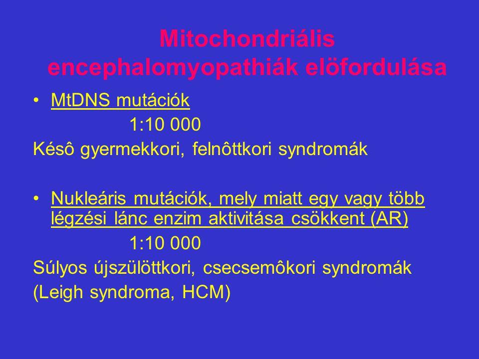 Mitochondriális encephalomyopathiák elöfordulása MtDNS mutációk 1:10 000 Késô gyermekkori, felnôttkori syndromák Nukleáris mutációk, mely miatt egy va