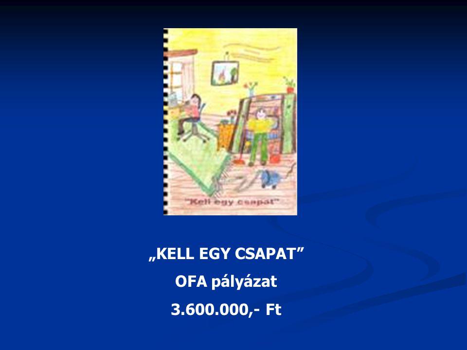 """""""KELL EGY CSAPAT"""" OFA pályázat 3.600.000,- Ft"""