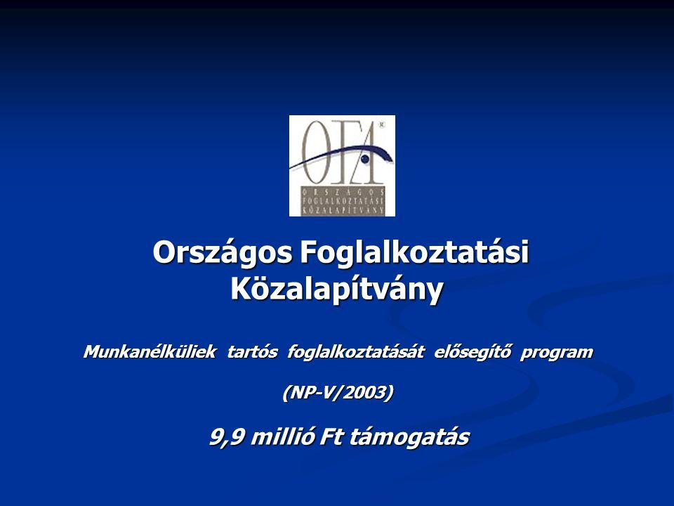Országos Foglalkoztatási Közalapítvány Országos Foglalkoztatási Közalapítvány Munkanélküliek tartós foglalkoztatását elősegítő program (NP-V/2003) 9,9
