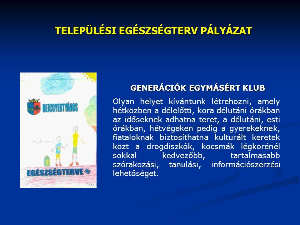 2001.június Az Informatikai Kormánybiztosság TELEHÁZ pályázatot hirdet egyesületek számára.