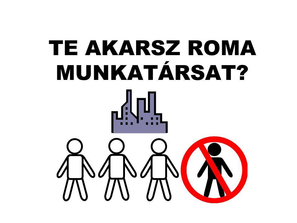 A nem romák elsősorban a munkához való viszonyuk alapján ítélik meg a romákat.