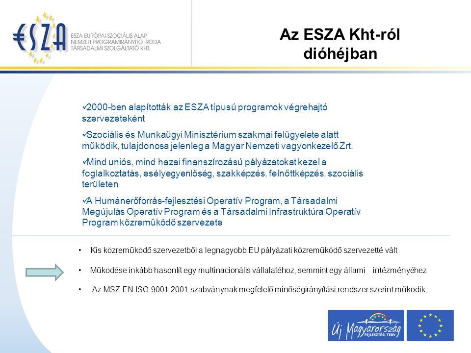 2000-ben alapították az ESZA típusú programok végrehajtó szervezeteként Szociális és Munkaügyi Minisztérium szakmai felügyelete alatt működik, tulajdonosa jelenleg a Magyar Nemzeti vagyonkezelő Zrt.