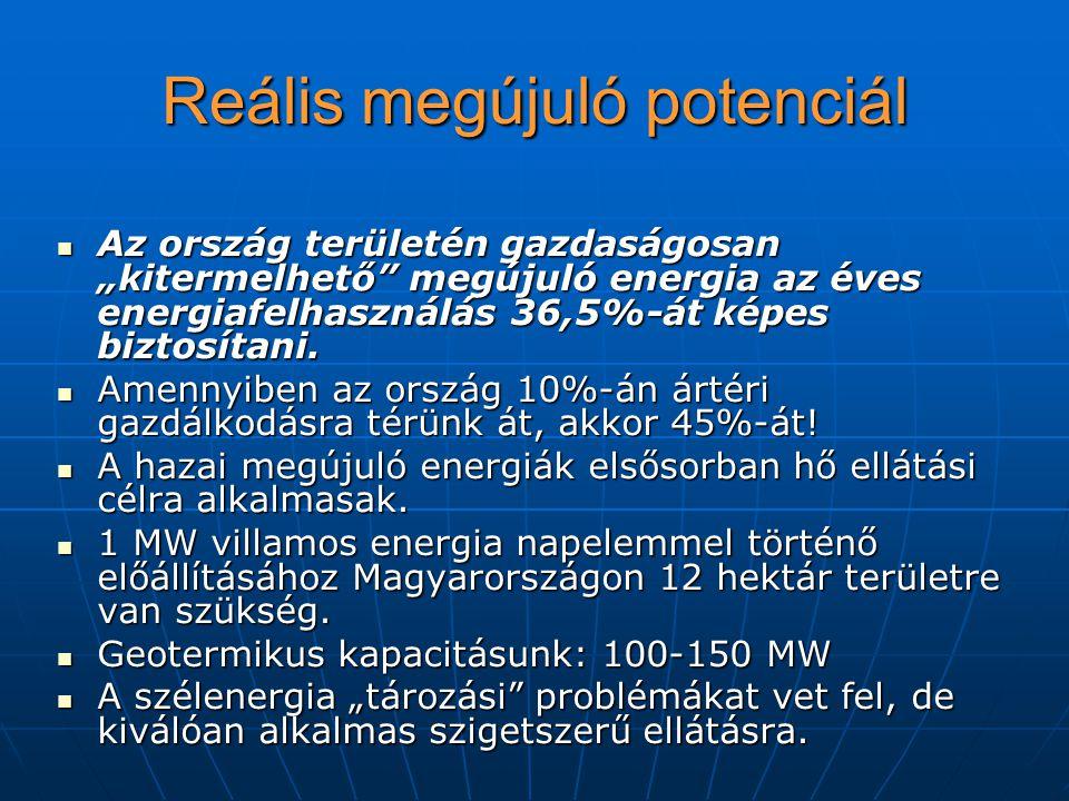 """Reális megújuló potenciál Az ország területén gazdaságosan """"kitermelhető megújuló energia az éves energiafelhasználás 36,5%-át képes biztosítani."""
