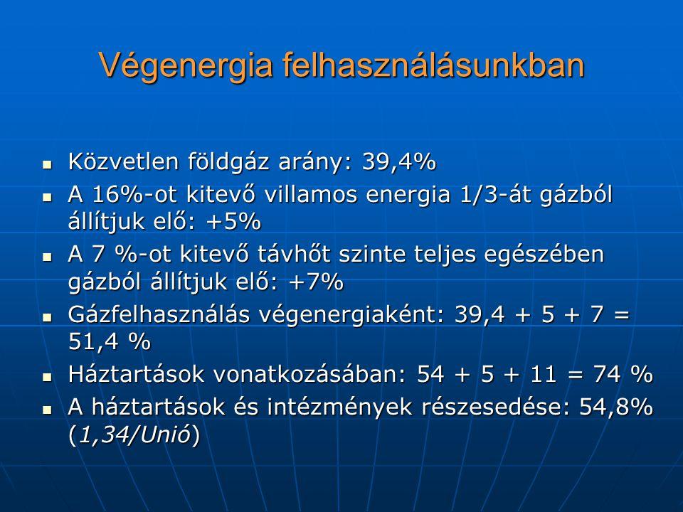 Végenergia felhasználásunkban Közvetlen földgáz arány: 39,4% Közvetlen földgáz arány: 39,4% A 16%-ot kitevő villamos energia 1/3-át gázból állítjuk el
