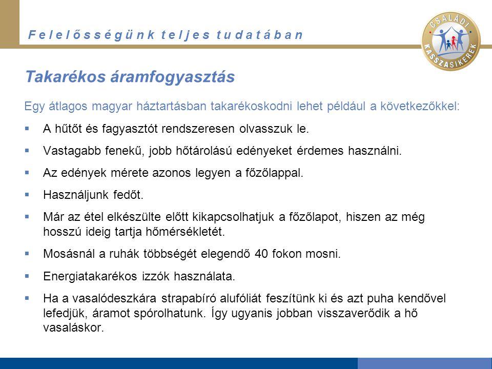 F e l e l ő s s é g ü n k t e l j e s t u d a t á b a n Takarékos áramfogyasztás Egy átlagos magyar háztartásban takarékoskodni lehet például a következőkkel:  A hűtőt és fagyasztót rendszeresen olvasszuk le.