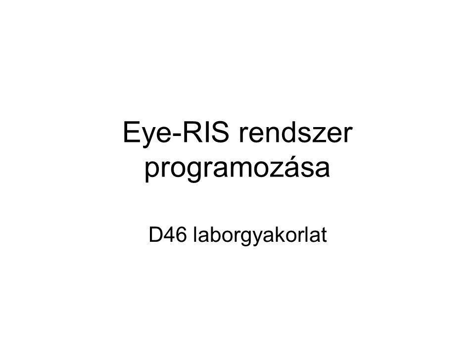 Eye-RIS rendszer programozása D46 laborgyakorlat