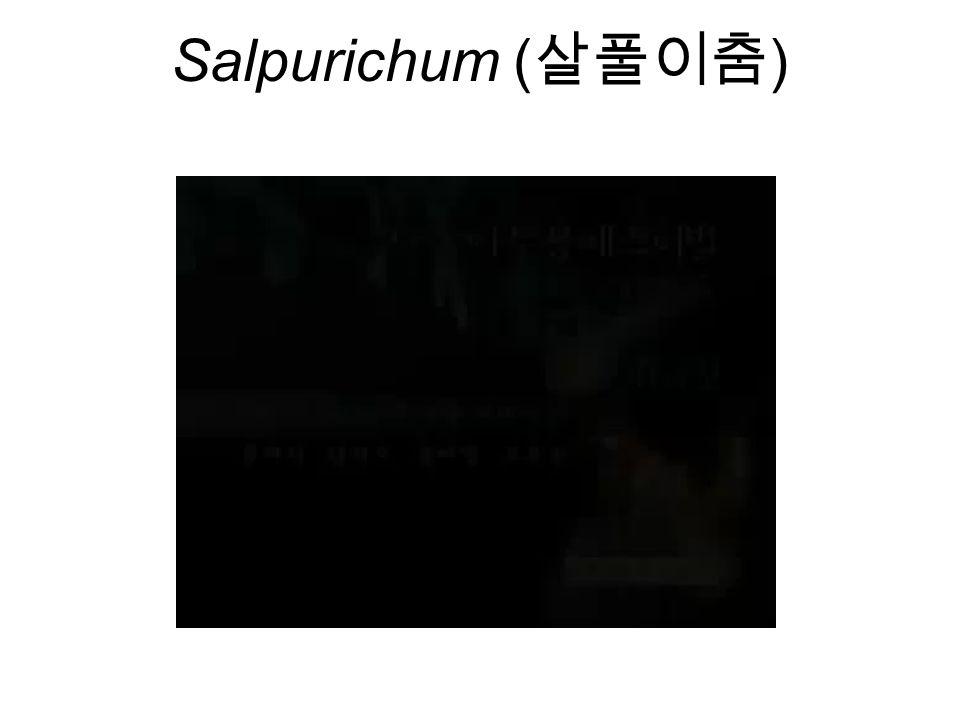 Salpurichum ( 살풀이춤 )
