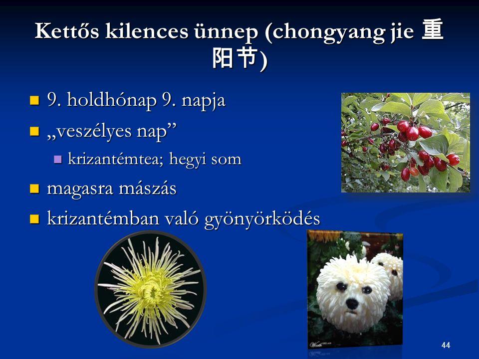 "44 Kettős kilences ünnep (chongyang jie 重 阳节 ) 9. holdhónap 9. napja 9. holdhónap 9. napja ""veszélyes nap"" ""veszélyes nap"" krizantémtea; hegyi som kri"