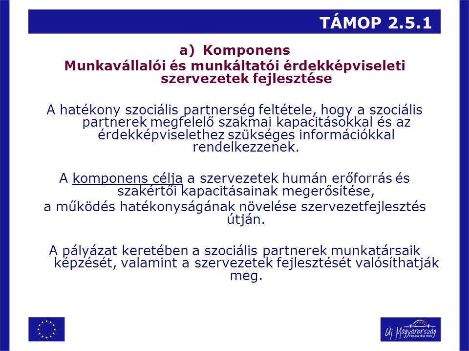 TÁMOP 2.5.1 a)Komponens Munkavállalói és munkáltatói érdekképviseleti szervezetek fejlesztése A hatékony szociális partnerség feltétele, hogy a szociá