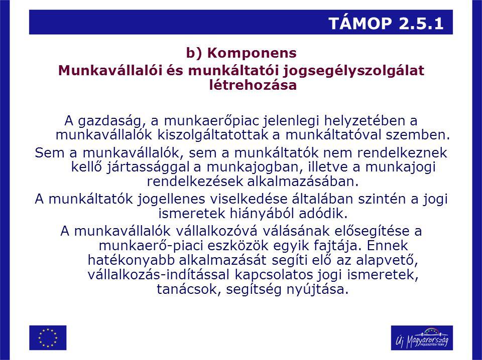 TÁMOP 2.5.1 b) Komponens Munkavállalói és munkáltatói jogsegélyszolgálat létrehozása A gazdaság, a munkaerőpiac jelenlegi helyzetében a munkavállalók