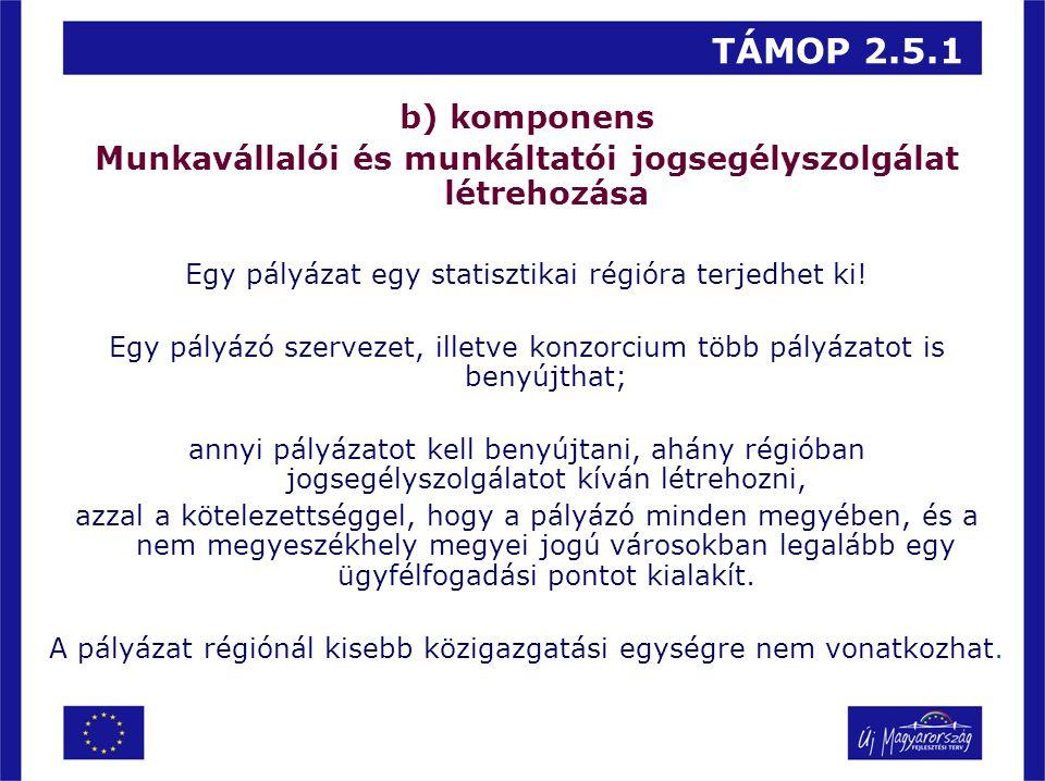 TÁMOP 2.5.1 b) komponens Munkavállalói és munkáltatói jogsegélyszolgálat létrehozása Egy pályázat egy statisztikai régióra terjedhet ki! Egy pályázó s