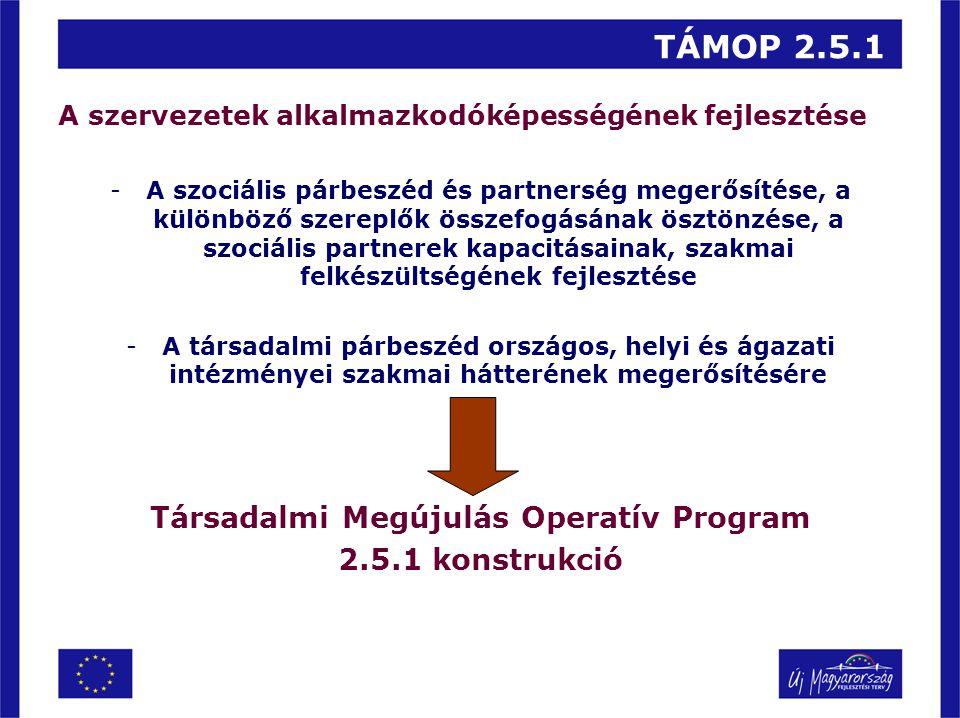 TÁMOP 2.5.1 A szervezetek alkalmazkodóképességének fejlesztése -A szociális párbeszéd és partnerség megerősítése, a különböző szereplők összefogásának