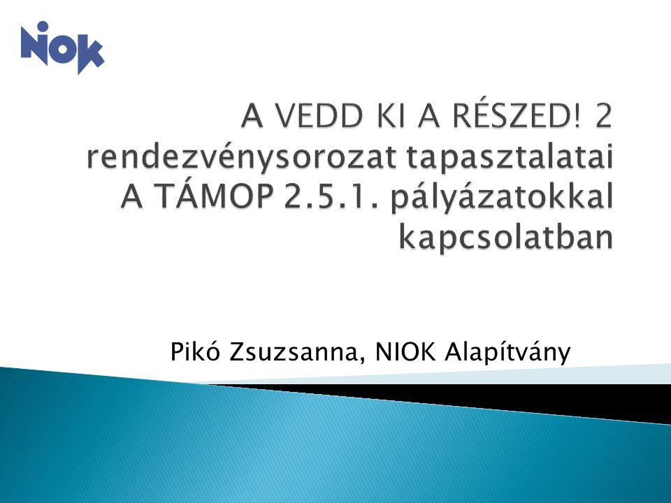 Pikó Zsuzsanna, NIOK Alapítvány