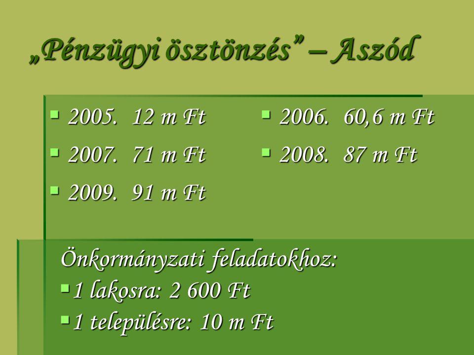 """""""Pénzügyi ösztönzés"""" – Aszód  2005. 12 m Ft  2007. 71 m Ft  2009. 91 m Ft  2006. 60,6 m Ft  2008. 87 m Ft Önkormányzati feladatokhoz:  1 lakosra"""
