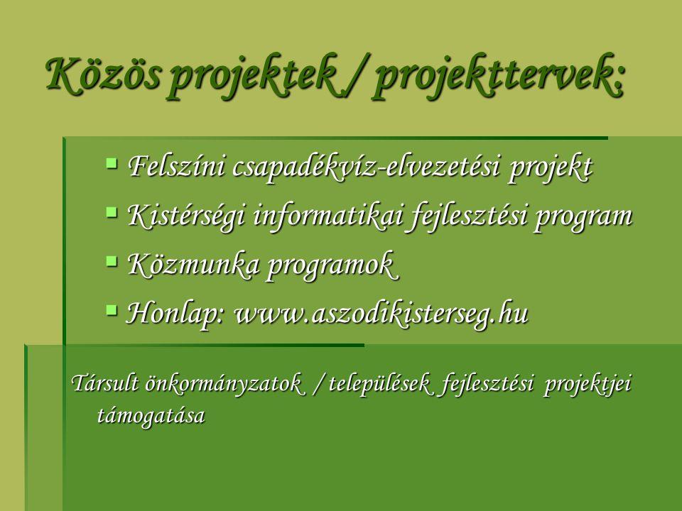 Közös projektek / projekttervek:  Felszíni csapadékvíz-elvezetési projekt  Kistérségi informatikai fejlesztési program  Közmunka programok  Honlap: www.aszodikisterseg.hu Társult önkormányzatok / települések fejlesztési projektjei támogatása