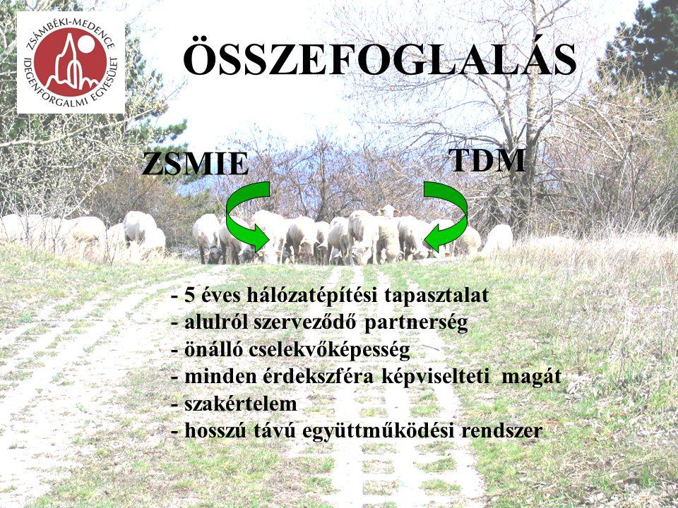 ÖSSZEFOGLALÁS ZSMIE TDM - 5 éves hálózatépítési tapasztalat - alulról szerveződő partnerség - önálló cselekvőképesség - minden érdekszféra képviseltet